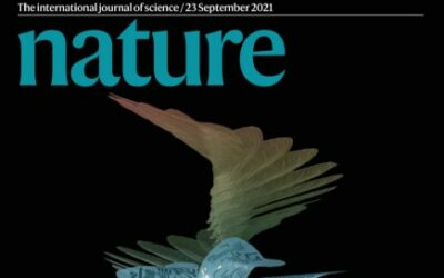 George CAPUTA videoconference on the 7th of october at 11h : Nature 's editorial policy
