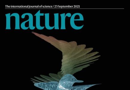 George CAPUTA en visioconférence le 7 octobre à 11h : politique éditoriale de Nature